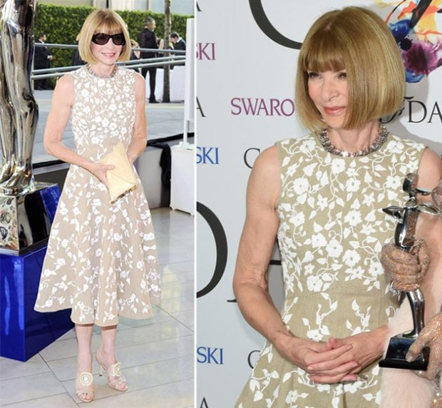 CFDA_Fashion_Awards_2014_Red_Carpet_Fashion_Anna_Wintour