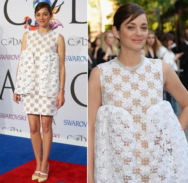CFDA_Fashion_Awards_2014_Red_Carpet_Fashion_Marion_Cotillard